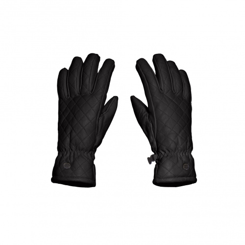 Ski & Snow Gloves - Goldbergh NISHI Gloves | Snowwear